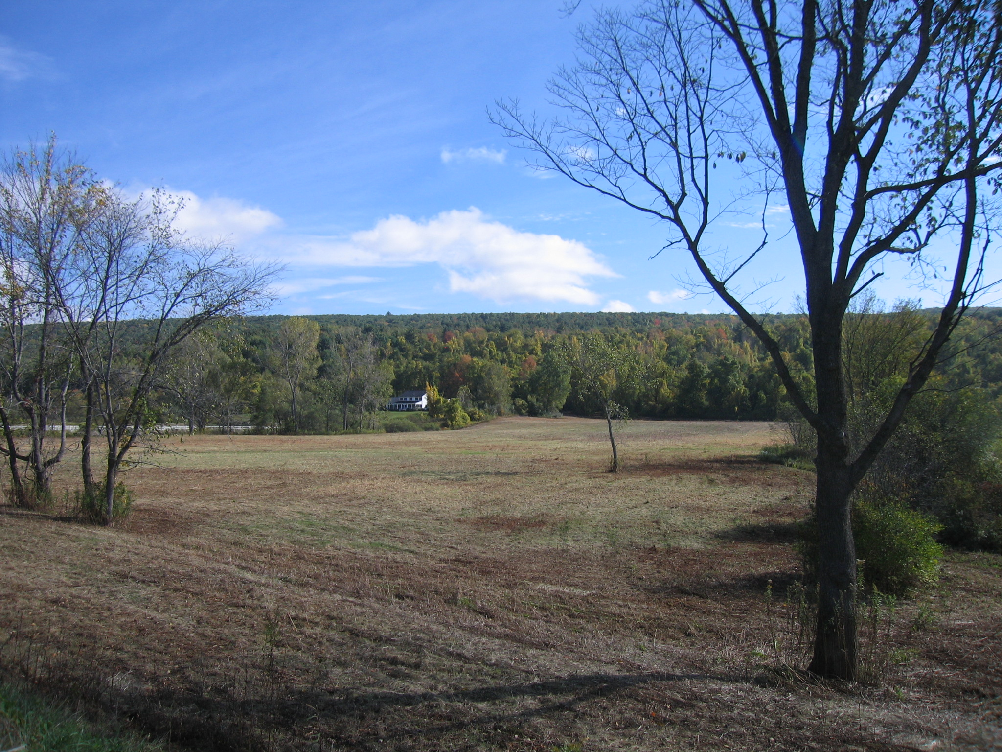 Ladd Property is donated to Great Barrington Land Conservancy
