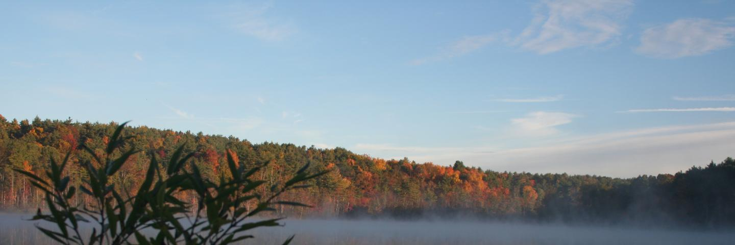 Morning Mist at Lake Mansfield, Berkshire County