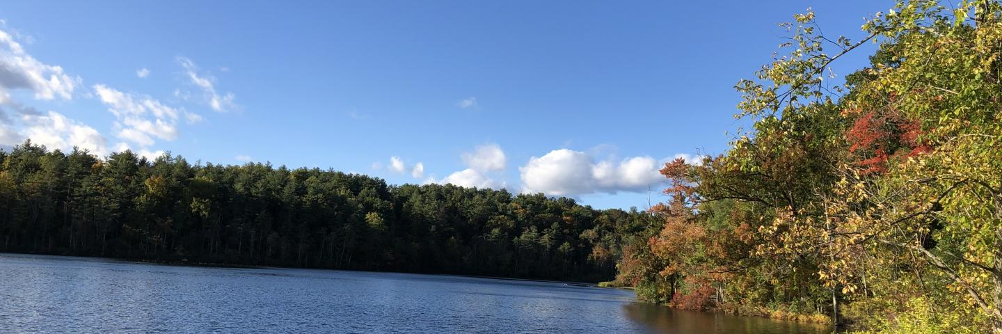 Lake Mansfield Autumn